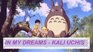 in my dreams - kali uchis (lyrics)