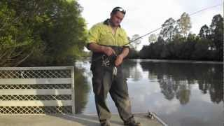 One of teammadmullet's most viewed videos: How to catch Logan River Bull Sharks