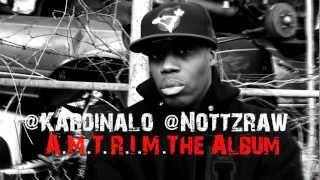 Смотреть клип Kardinal Offishall - Kill Shot