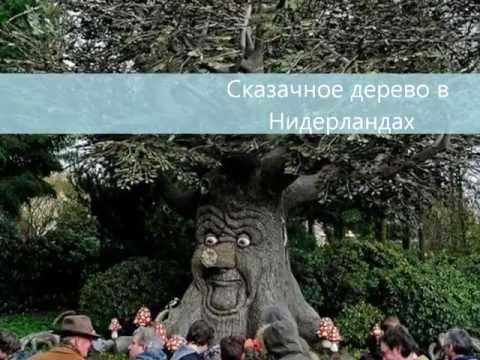 7 чудес России семь чудес света
