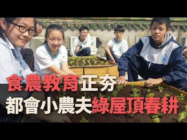 食農教育正夯 都會小農夫綠屋頂春耕【央廣新聞】