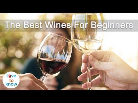 7 Best Wines for Beginners   LoveToKnow