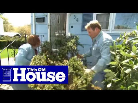 How To Remove And Replace Foundation Plantings This Old