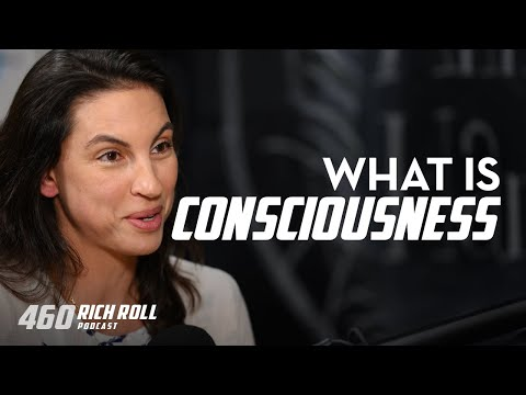 Annaka Harris On Consciousness | Rich Roll Podcast