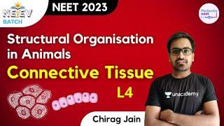 Structural Organisation in Animals: Connective Tissue | L4 | NEEV Batch | NEET 2023 | Chirag Jain