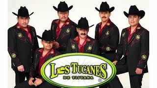 Los Tucanes De Tijuana / Puros Corridos Pesados Mix 2021