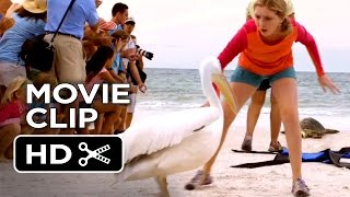 Dolphin Tale 2 Movie CLIP - Shoo Rufus (2014) - Morgan Freeman Dolphin Drama HD