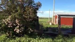 Prairie Homestead Farm Tour
