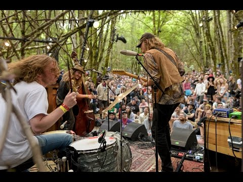 Daniel Norgren - People Are Good - Woods Stage @Pickathon 2016 S04E08