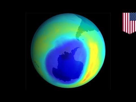 Ozone layer: Ozone hole over Antarctica shrinks to smallest since 1988 - TomoNews