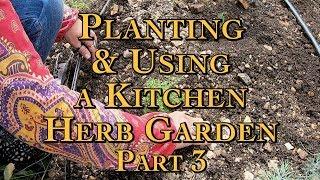 Planting & Using a Kitchen Herb Garden Part 3