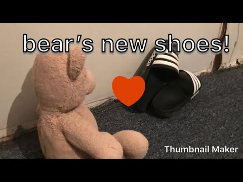 Bear's New Shoes