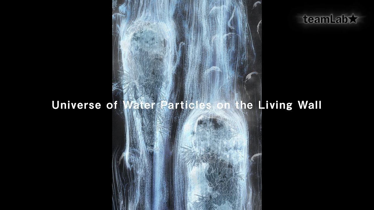 Universe of Water Particles on the Living Wall – Kodai Takao