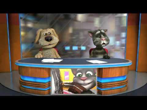 Говорящие кошки - Видео приколы