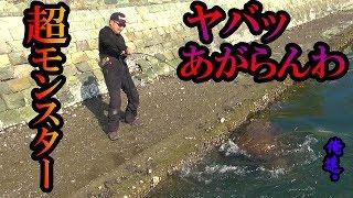 魚がデカすぎて釣りあげられない! thumbnail
