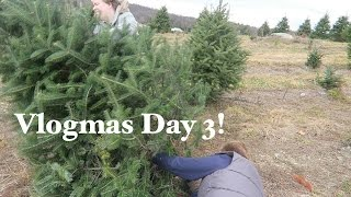 Knit Style VLOG--Vlogmas Day 3 Cutting Down The Tree!