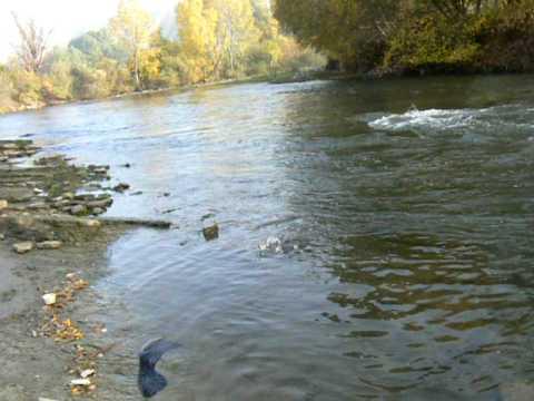 skobalj na reka vardar