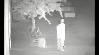 видео Зубков Тайган охранник камеры наблюдения(видео с камер наблюдения парка львов Тайган., 2015-12-09T06:40:46.000Z)