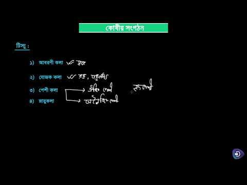 02. বিজ্ঞান (সপ্তম শ্রেণি) – উদ্ভিদ ও প্রাণীর কোষীয় সংগঠন