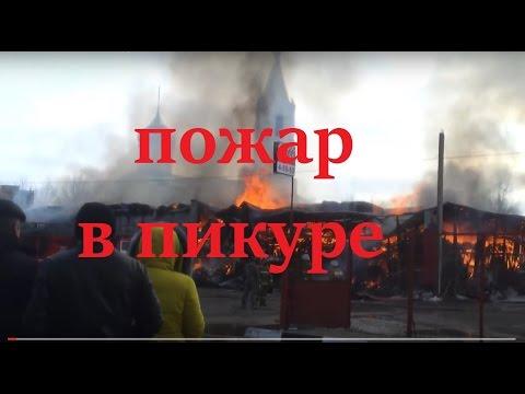 Шлюхи алексеевка белгородская область