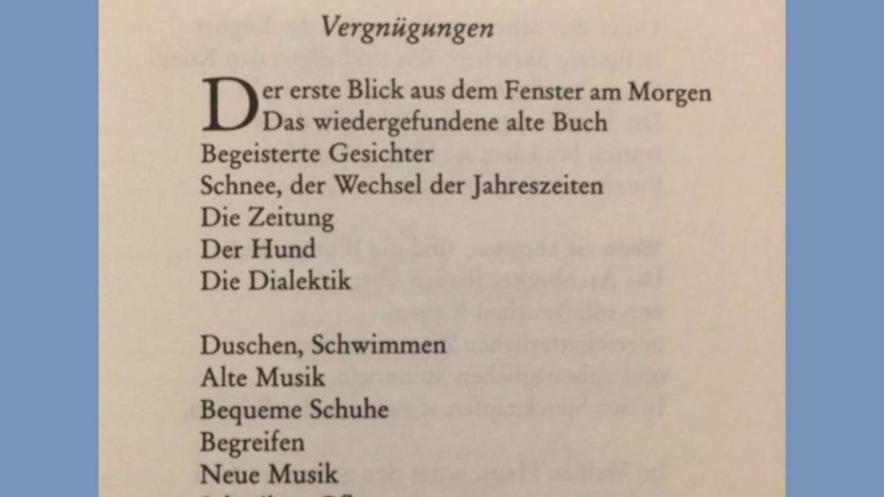 Bertolt Brecht Vergnügungen
