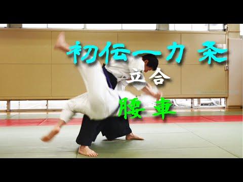 東京稽古会229 一カ条立合腰車 大東流合気柔術