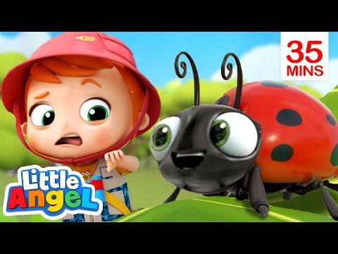 Bugs, Bugs, Go
