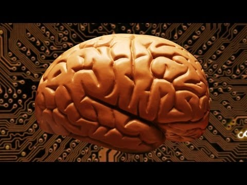 Explainer: How Many Megates Does Your Brain Hold?