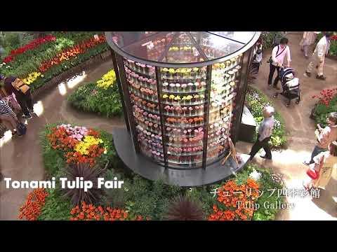 World Tulip Summit Society Ottawa 2017 compilation