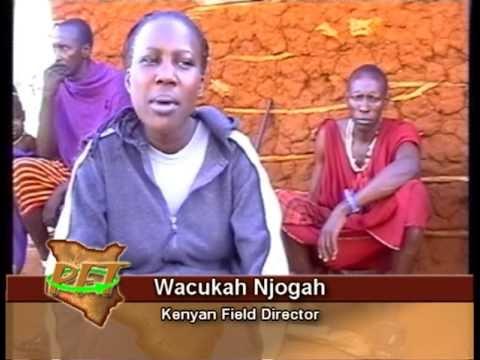 Partnership For Transformation (Kenya)