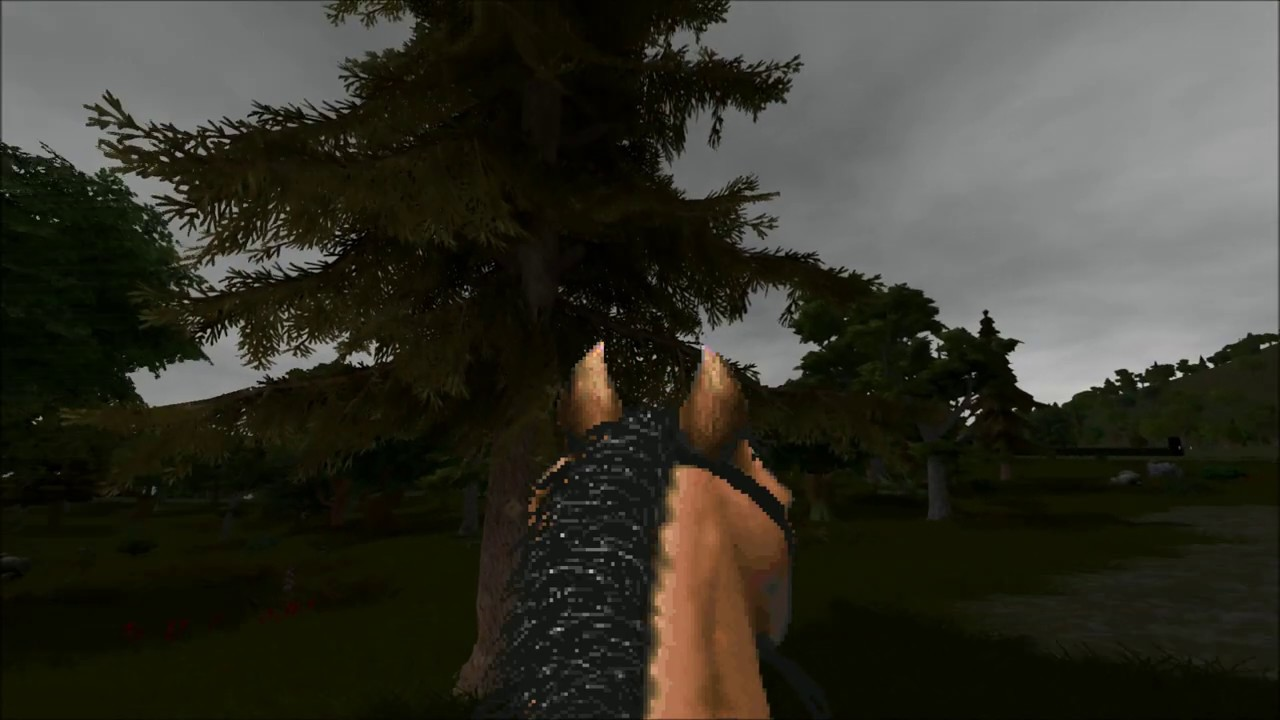 Vapourware - Daggerfall Unity isnt Vaporware | Page 49
