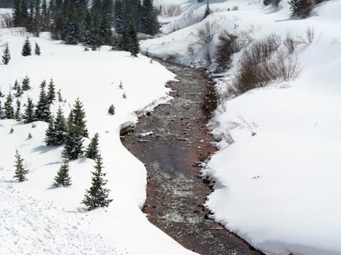 Lake Emma Gold 20 Acre Placer Mining Claim on Historic Cement Creek near Silverton Colorado