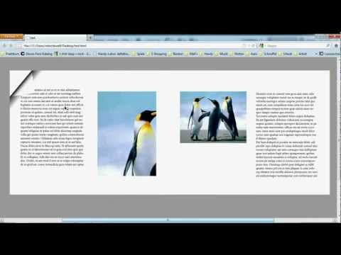 PDF zum blättern InDesign CS5 Tutorial Page Flipping