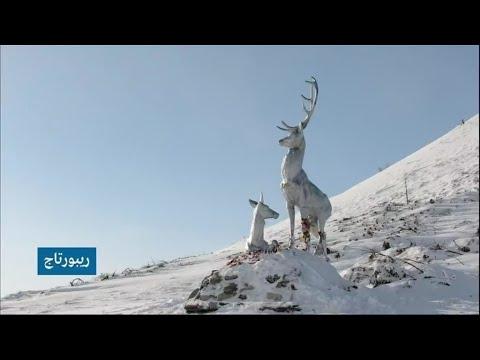 روسيا: رحلة لعبور أخطر طرق العالم في صحراء سيبيريا الجليدية!!  - 16:59-2021 / 4 / 9