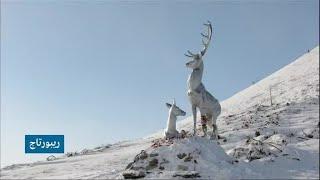 روسيا: رحلة لعبور أخطر طرق العالم في صحراء سيبيريا الجليدية!!