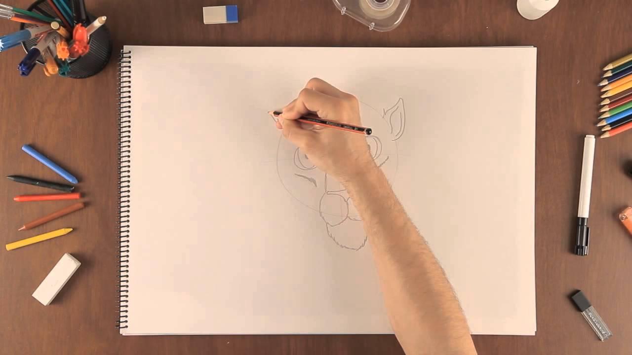 Como Dibujar Un Tigre Aprende A Profesional