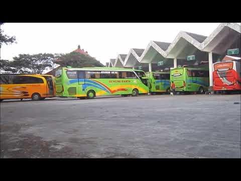 Suasana Keberangkatan Bus Malam di Terminal Mengwi
