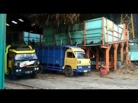 Bongkar Muatan Truck Tebu Di Pabrik Gula Semboro Jember Jawa Timur