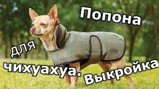 Выкройки одежды для собак! Чихуахуа одежда, комбинезон собака выкройка попона