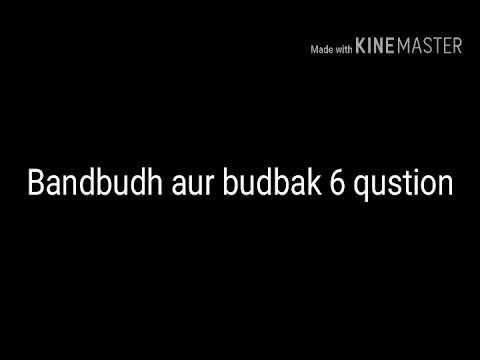 Bandbudh Aur Budbak 6 Questions