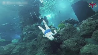 Girls Freediving And Bikini Swimming