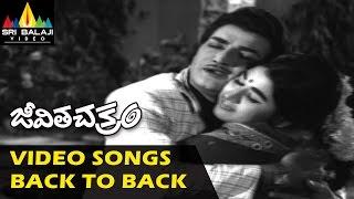 Jeevitha Chakram Songs Jukebox | Video Songs Back to Back | NTR, Vanisri | Sri Balaji Video
