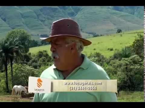 Conheça Delfinópolis, seus esportes, suas belezas e sua gastronomia