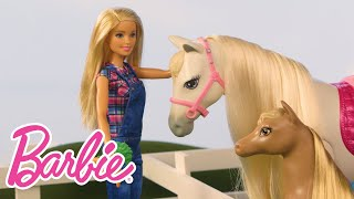 Life on the Farm with Barbie®, Chelsea™ and Skipper™ | Barbie® Careers | Barbie