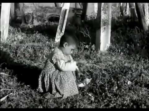 İSTANBUL 1960.YILLAR  (Motion Video)