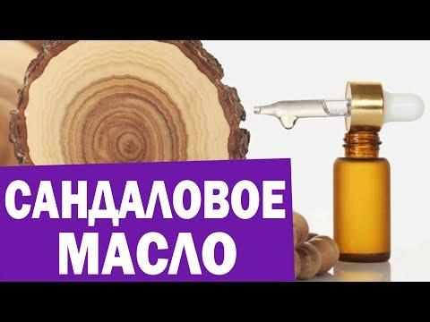 Сандаловое дерево  Сандаловое масло  Сандал  Аюрведа Здесь