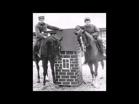 19 ноября день кавалерии.