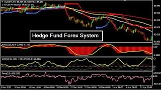 What is hedging|My Best Forex Hedging Strategy for FX Trading