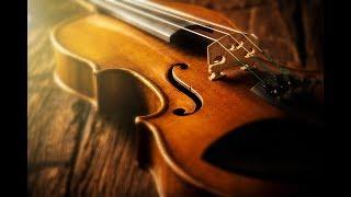 kanne kalaimane on violin