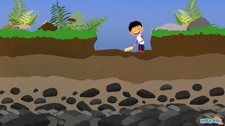 Soil Profile of Earth - Soil Layers and Horizons - Geography for Kids | Educational Videos by Mocomi